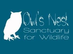 owls nest logo 1dk